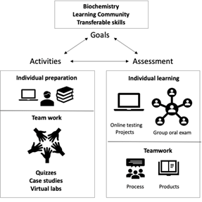 Goals, Assessments, and Activities chart listing the components of Dr. Goodman's biochemistry course.